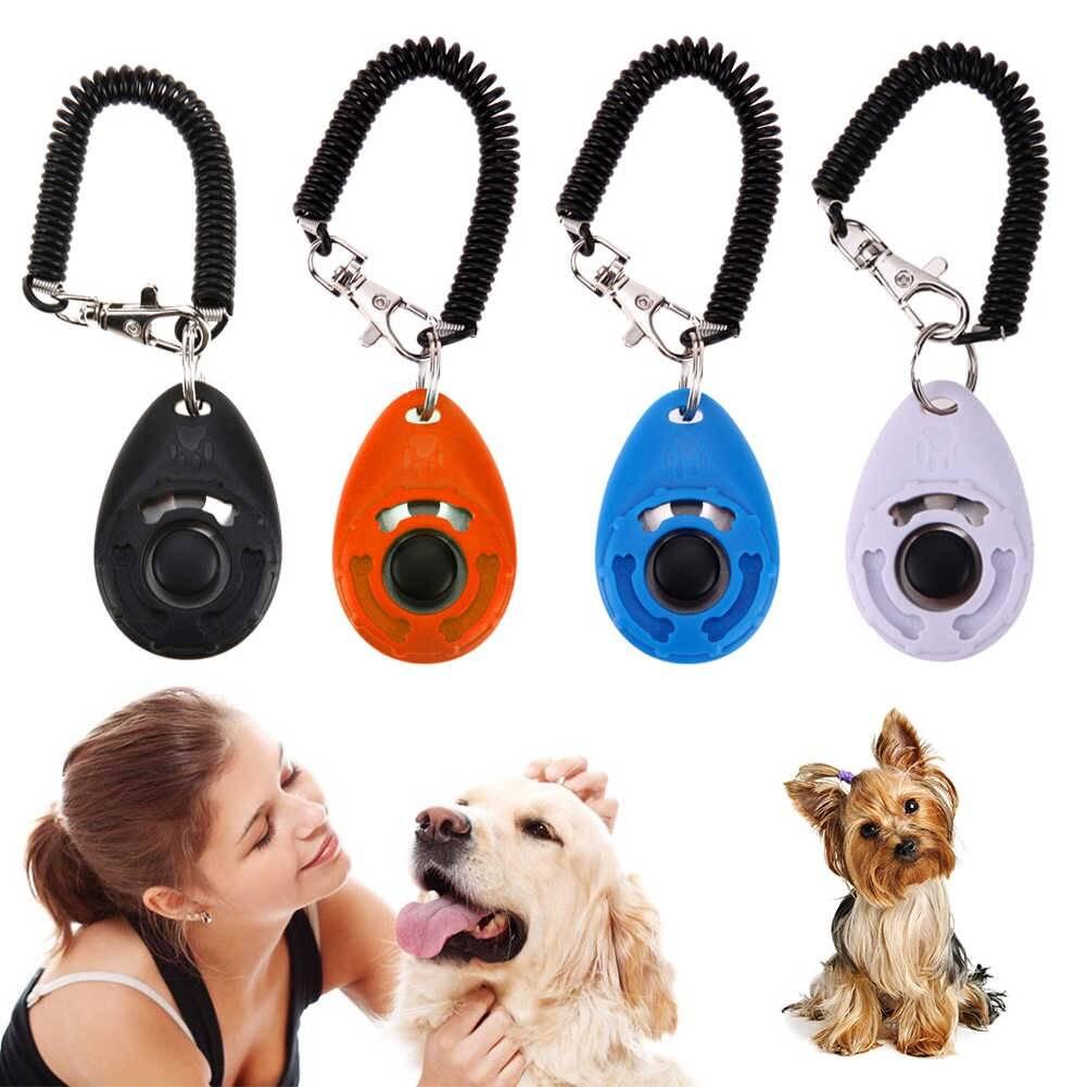 Кликер для дрессировки собак: что это и для чего он нужен?