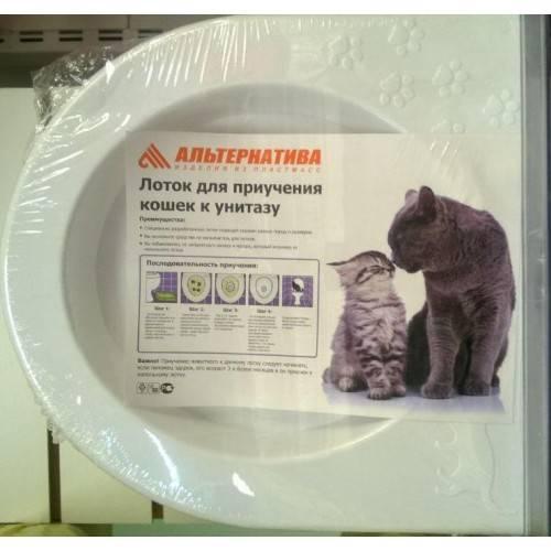 Как приучить котенка к туалету в квартире (способы приучения к унитазу и обзор популярных средств)