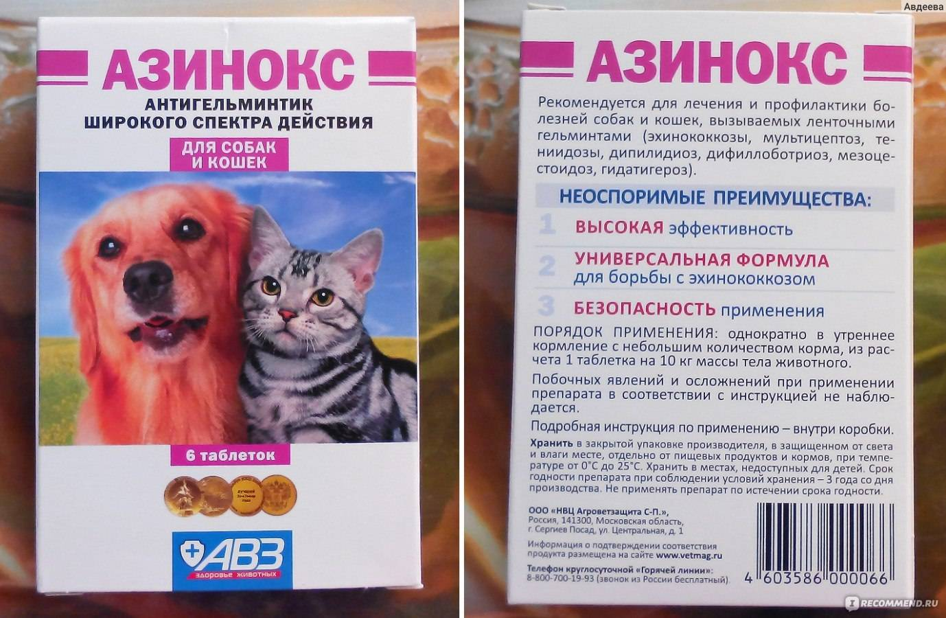 Азинокс для кошек: состав и форма выпуска, показания и инструкция по применению, аналоги и отзывы владельцев