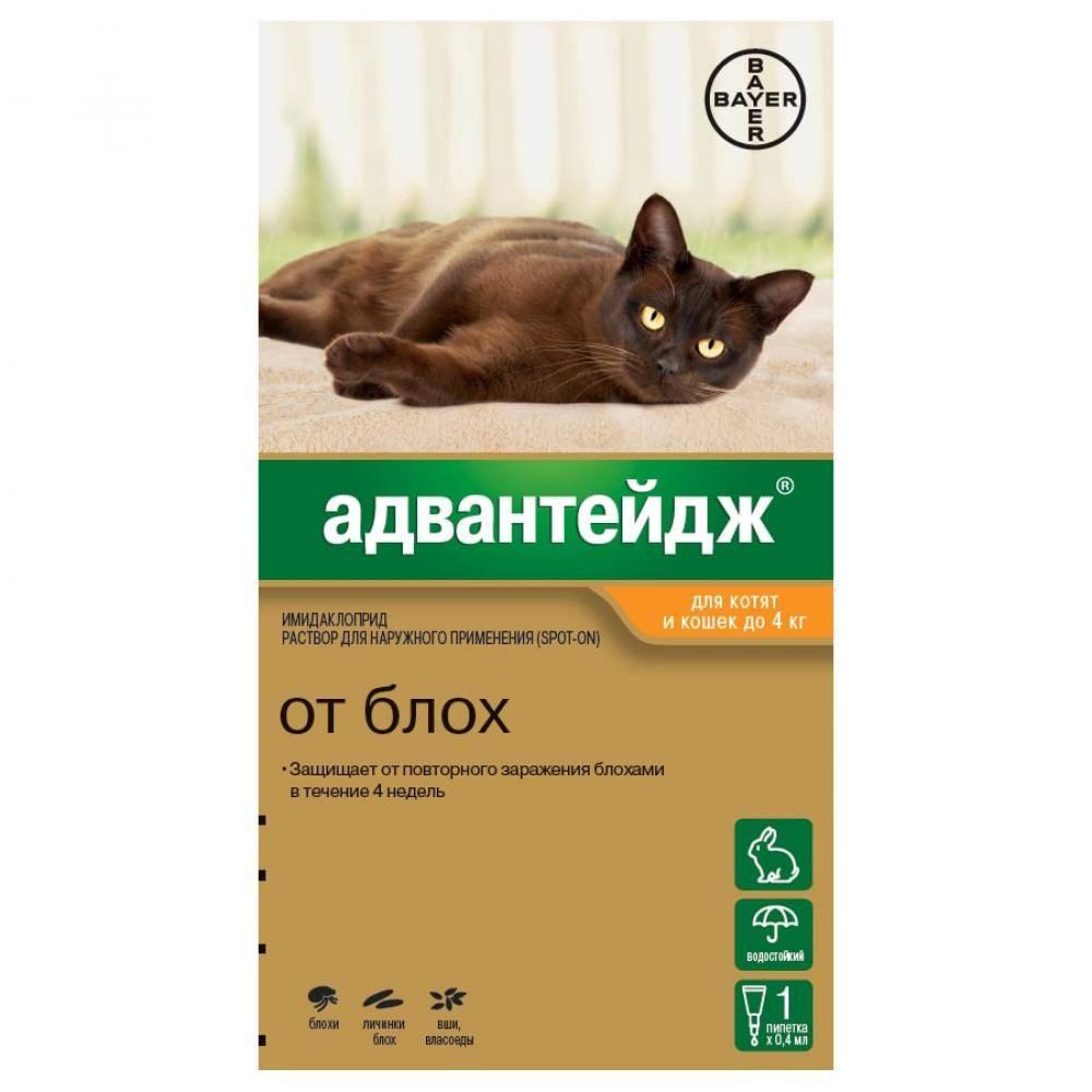 Адвантейдж для кошек — инструкция по применению