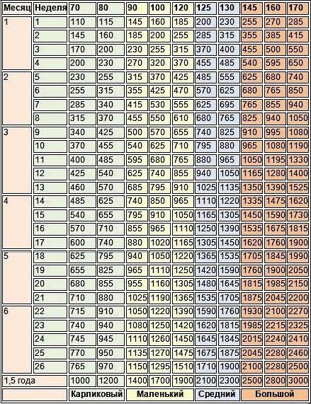 Вес йорка по месяцам: таблица, стандарт, до скольки месяцев растут
