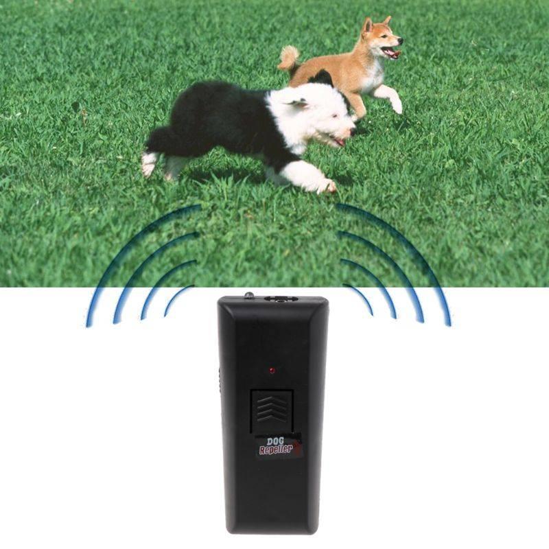 Ультразвуковой свисток для собак: для чего он предназначен?