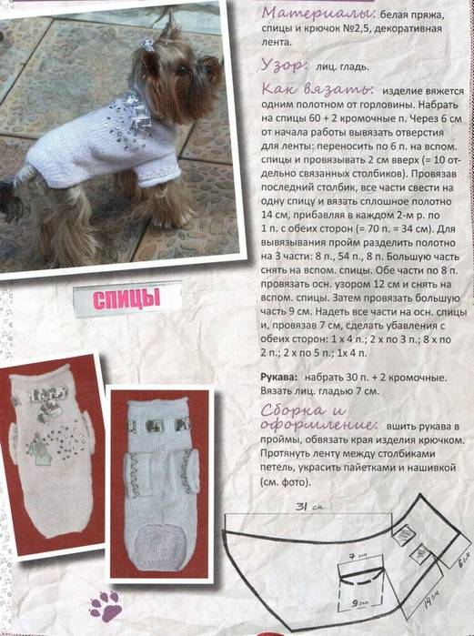 Вязание для собак мелких пород спицами: схемы и инструкция, выкройки