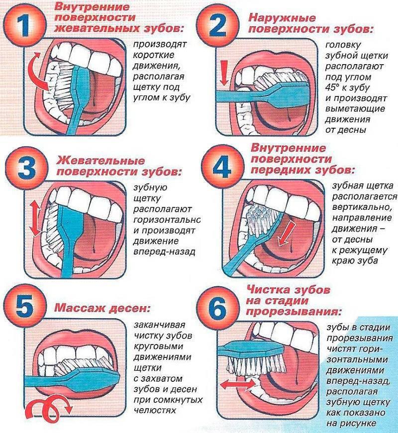 Как правильно чистить зубы, когда это делать и зачем, и какой щеткой :: инфониак