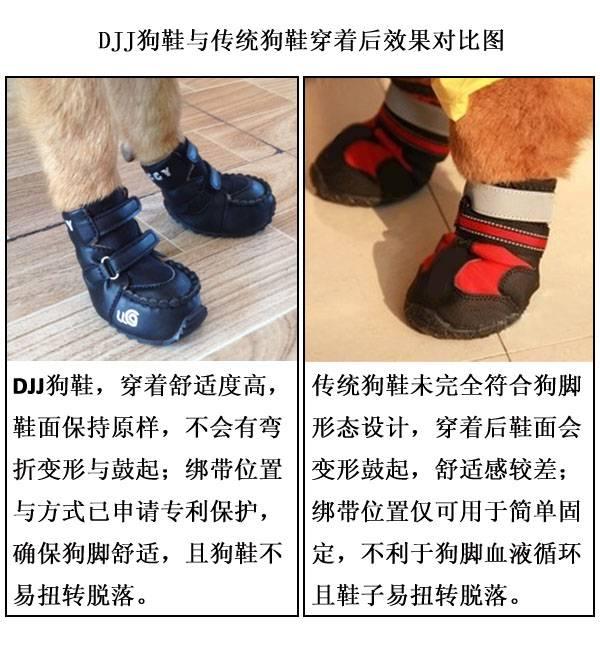 Нужна ли обувь маленьким собачкам?