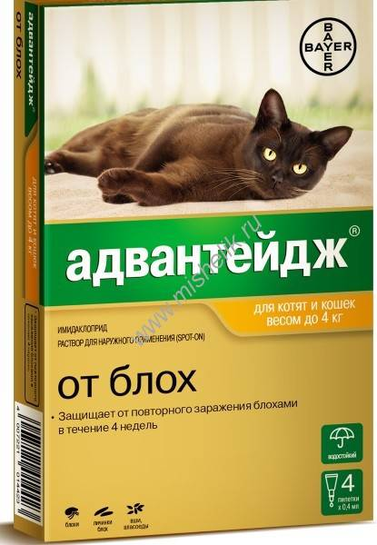Адвантейдж от блох для кошек
