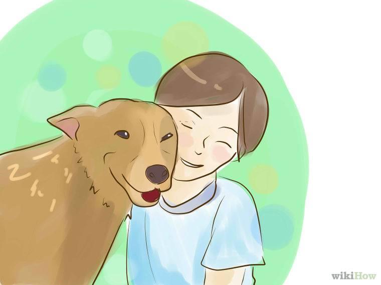 Как уговорить папу и маму завести собаку