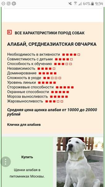Имена для собак породы среднеазиатская овчарка