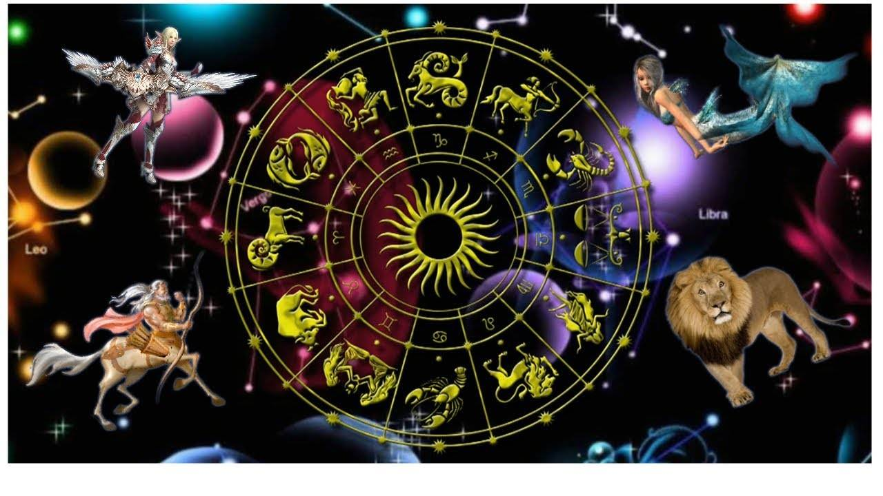 Какое домашнее животное выбрать каждому из знаков зодиака