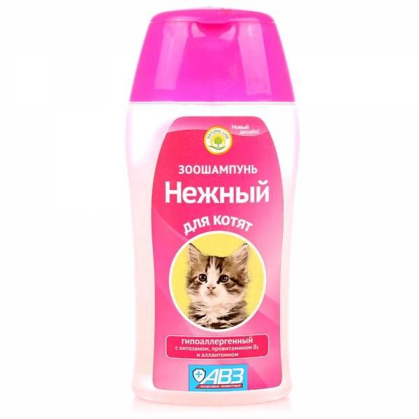 Основные виды шампуней для кошек, популярные марки, отзывы