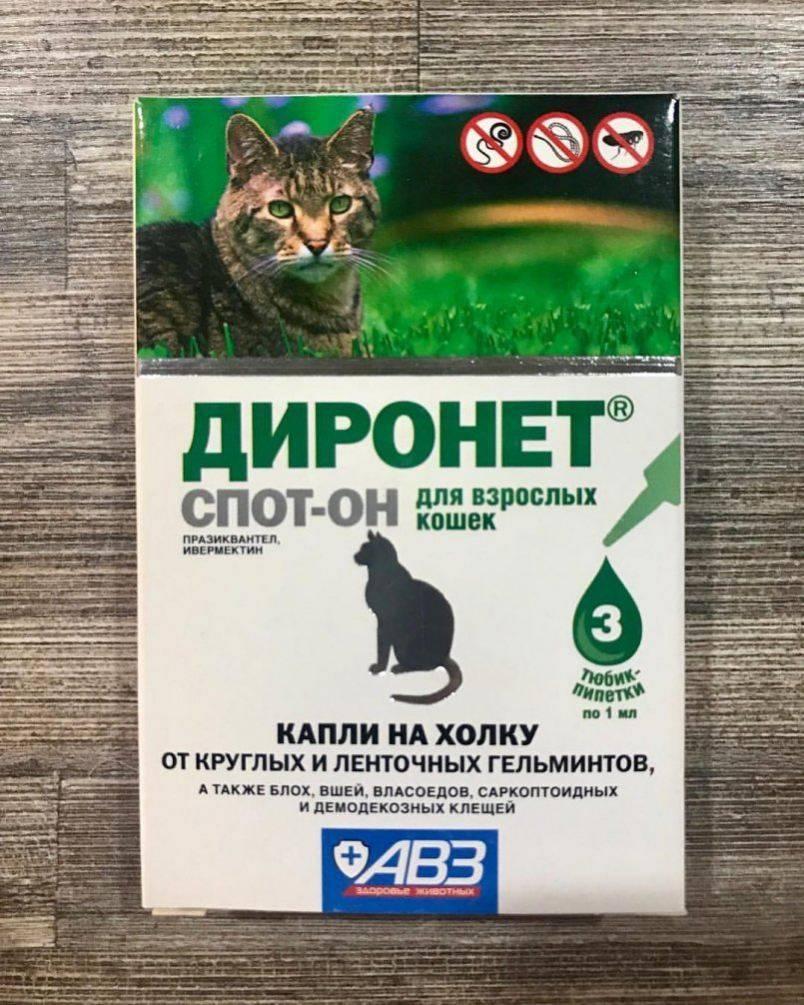 Фронтлайн для кошек:  комбо и спрей, инструкция по применению