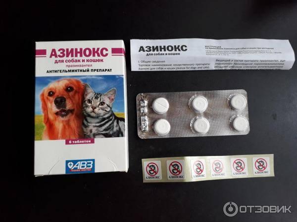 Азинокс плюс: инструкция по применению для собак и кошек