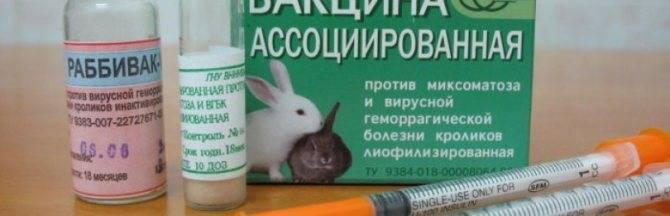 Об ассоциированной вакцине от миксоматоза и геморрагической болезни для кролика