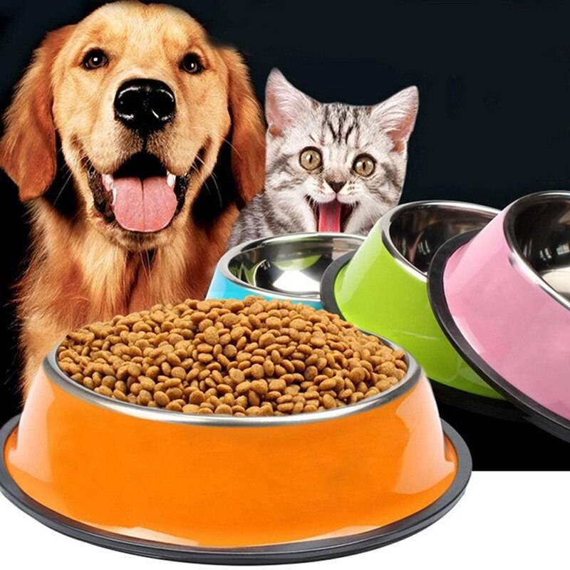 Можно ли кормить кошку сухим, влажным и натуральным кормом одновременно? как правильно смешивать корма? за и против их совмещения
