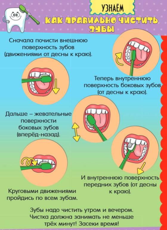 Выбор электрической зубной щётки: независимый топ