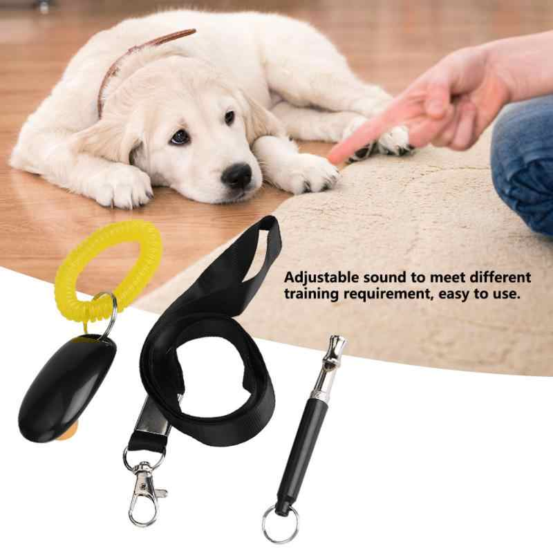 Кликер для собак: что это такое и как использовать для дрессировки