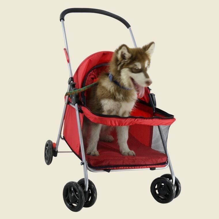 Как выбрать переноску для собаки