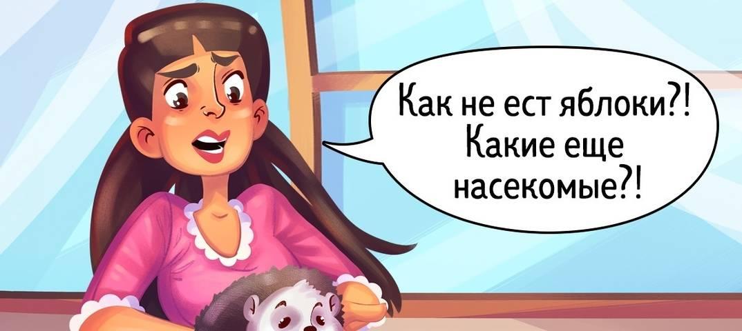 4 действия, которые нельзя делать в присутствии кошки - gafki.ru