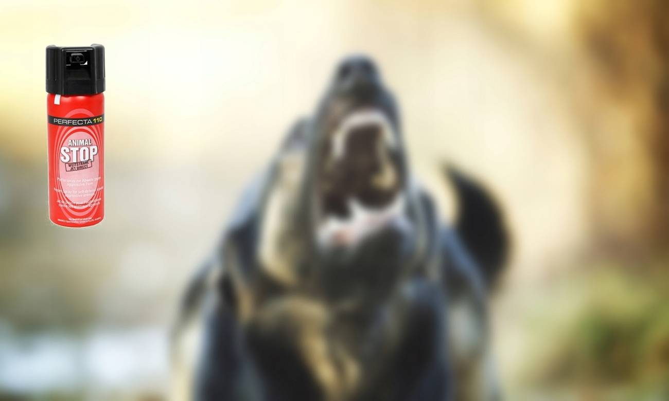 Перцовый баллончик от собак и для самообороны: выбор, инструкция, отзывы