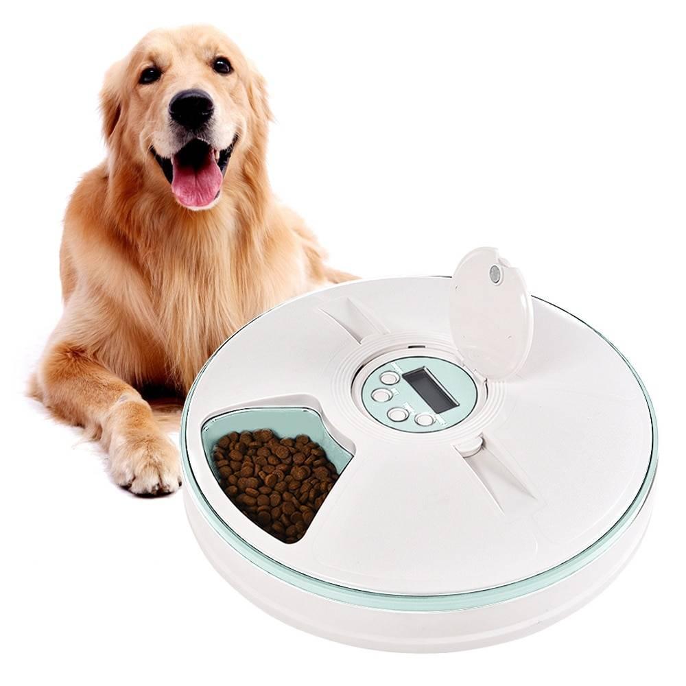 Автокормушки для больших собак с таймерами своими руками: автокормление для крупных и мелких пород собак