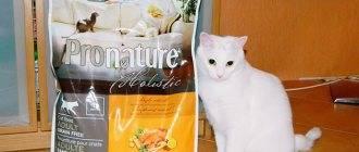 Лучший влажный корм для кошек по мнению ветеринаров, фото, видео