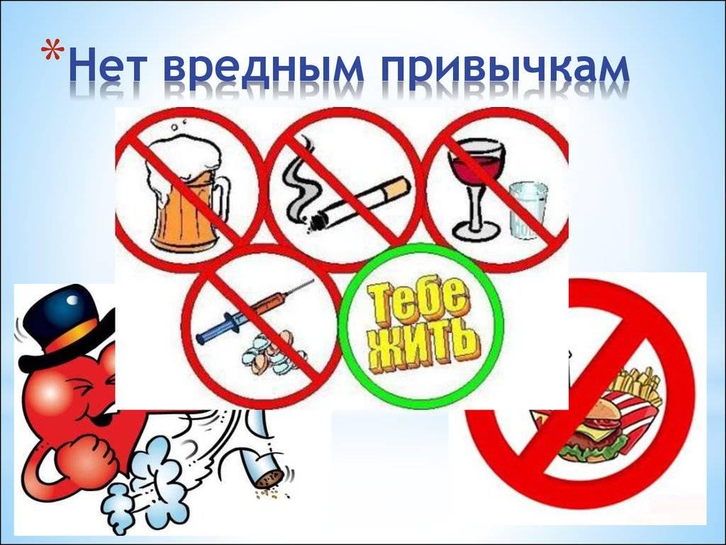 Чем опасен для кошек табачный дым