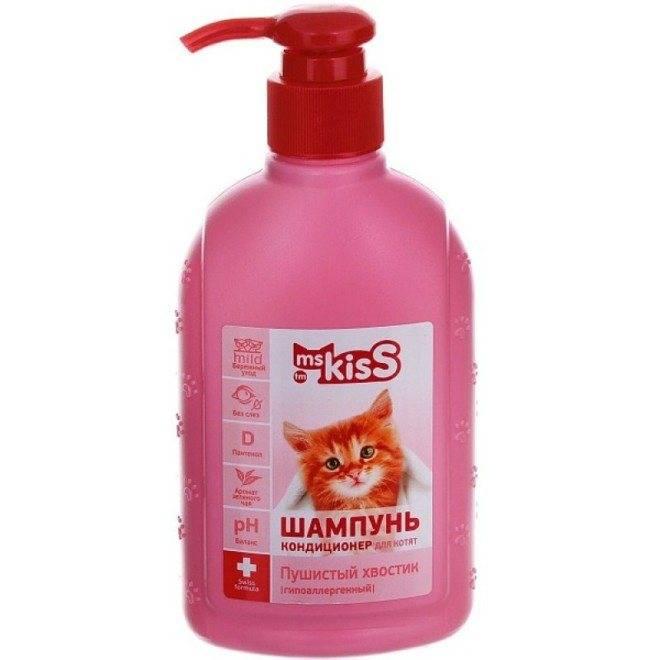 Какие шампуни лучше всего выбирать для котят и взрослых кошек для шерсти