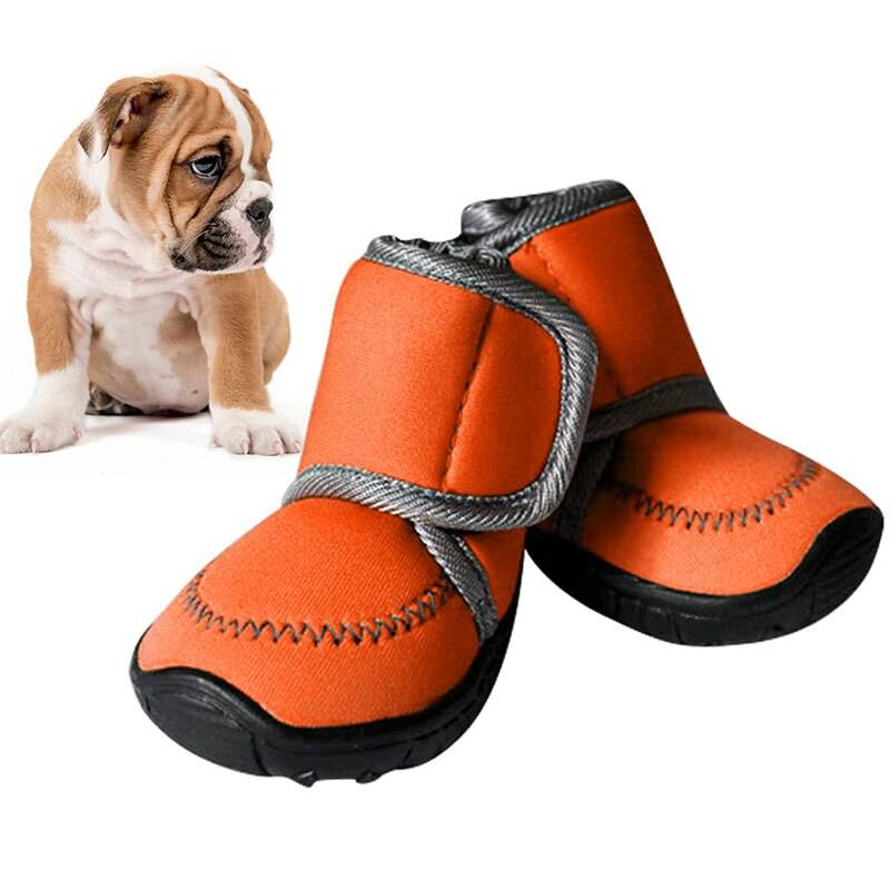 Обувь для собак мелких пород: для чего необходима и как подобрать размер