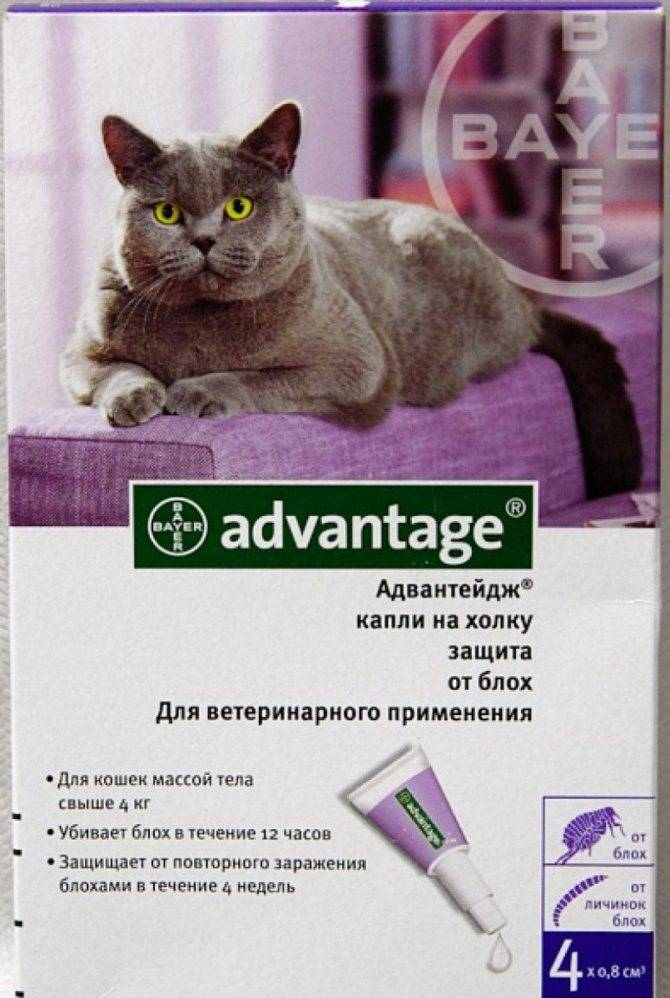 Адвантейдж — инструкция по применению препарата для кошек