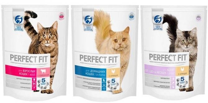 Корм для кошек перфект фит: обзор продукции, достоинства и недостатки, отзывы ветеринаров