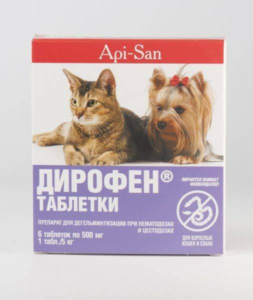 Таблетки, лекарства, капли от глистов для кошек: когда и как давать, названия, инструкции