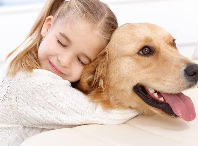 Породы собак для ребенка — выберете настоящего друга вашему малышу