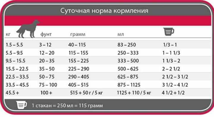 Корма класса холистик для собак: рейтинг и отзывы 2020 | petguru