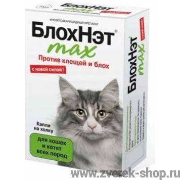 Что будет, если кошка слижет капли от блох - симптомы и лечение отравления инсектицидами