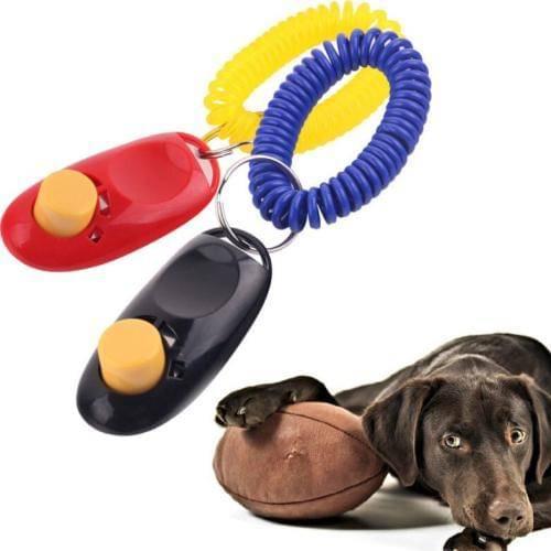 Дрессируем собаку при помощи кликера и электронного ошейника