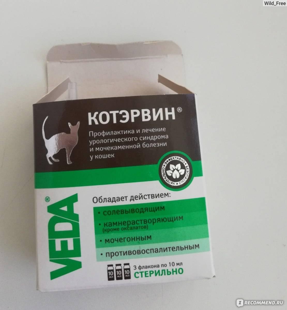Инструкция по применению для кошек препарата котэрвин, дозировки, показания и противопоказания