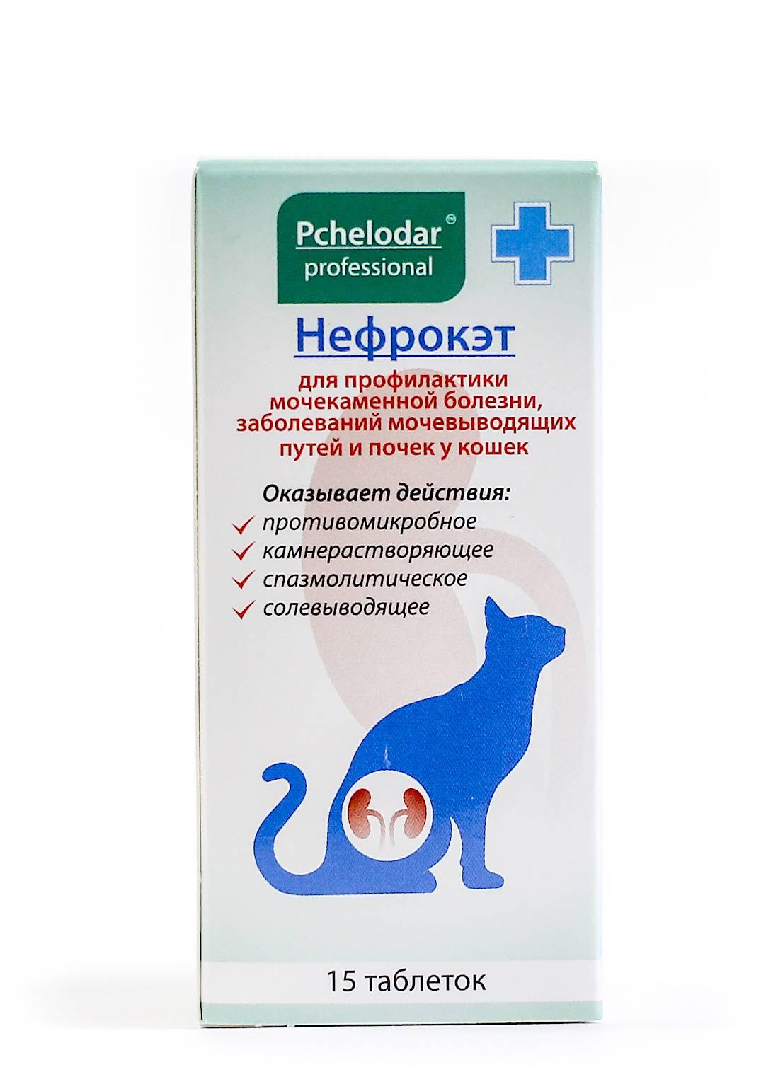Обезболивающее для кошек - виды и описание препаратов