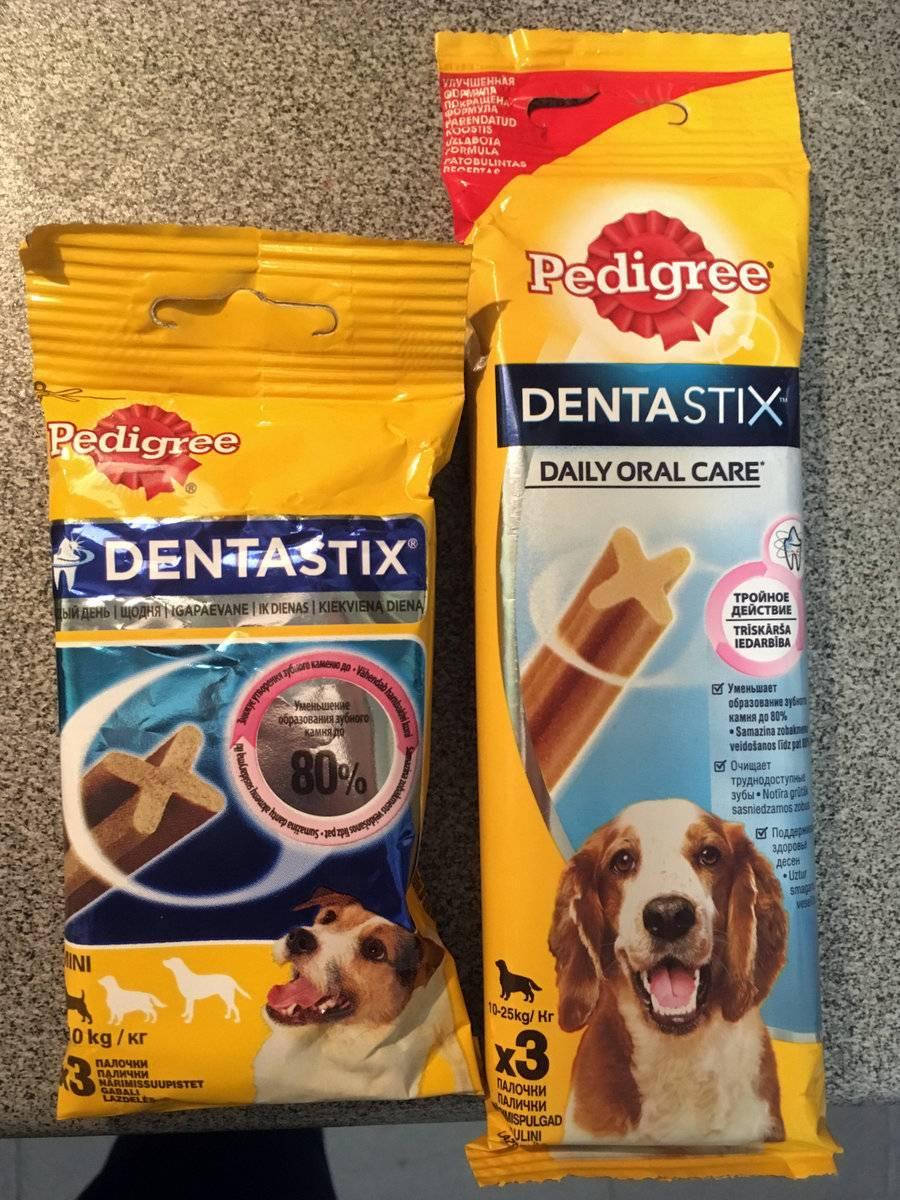 Так ли полезны говяжьи кости для собак? важная информация