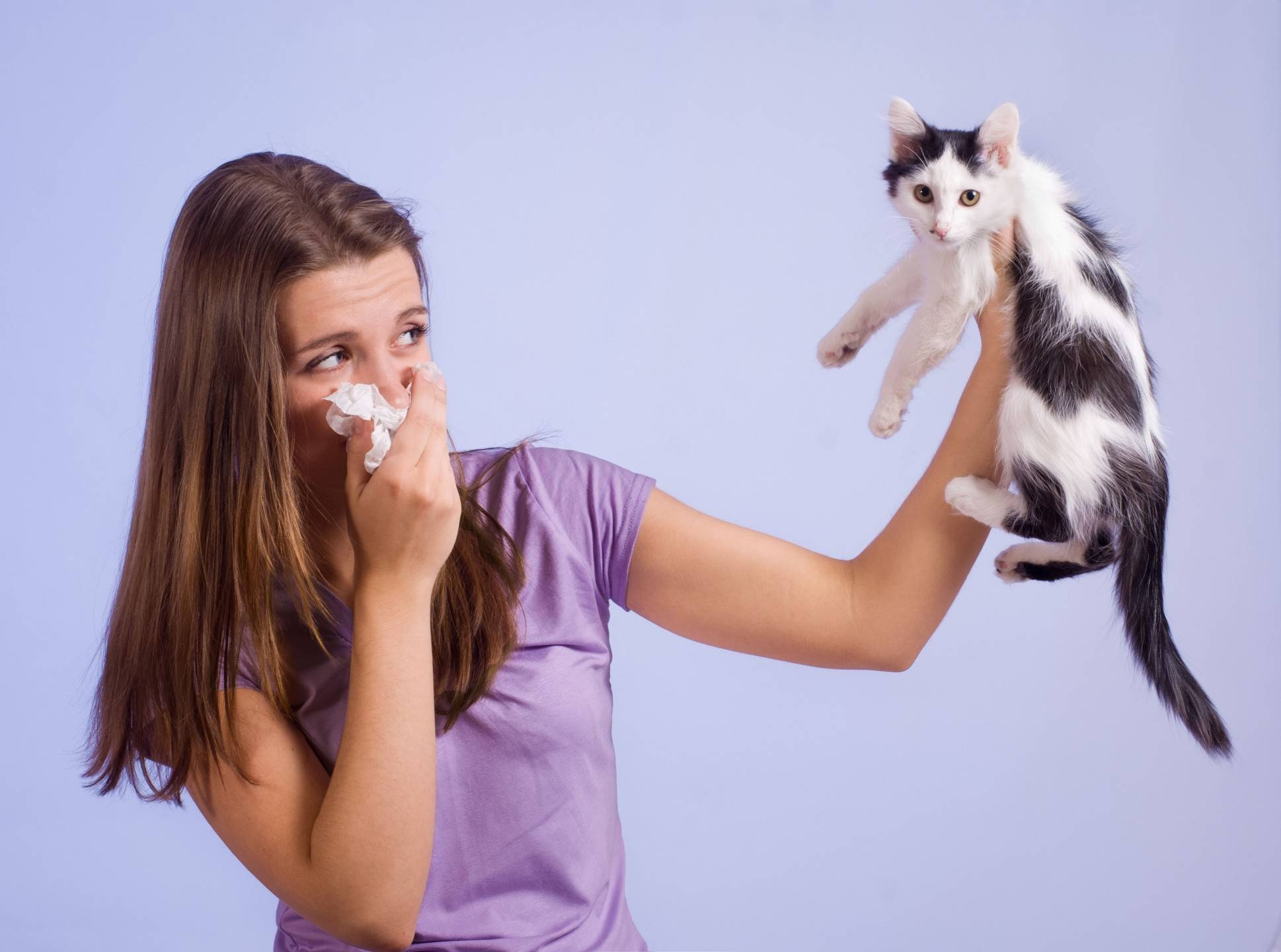 У сына сильнейшая аллергия на кошек... - спроси у бывалых - страна мам