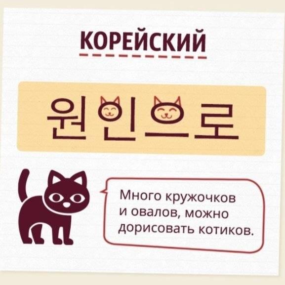 Японские имена для кошек и котов