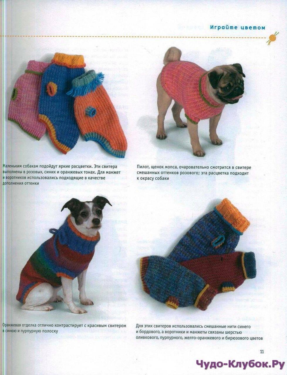 Вязание спицами для собак мелких пород