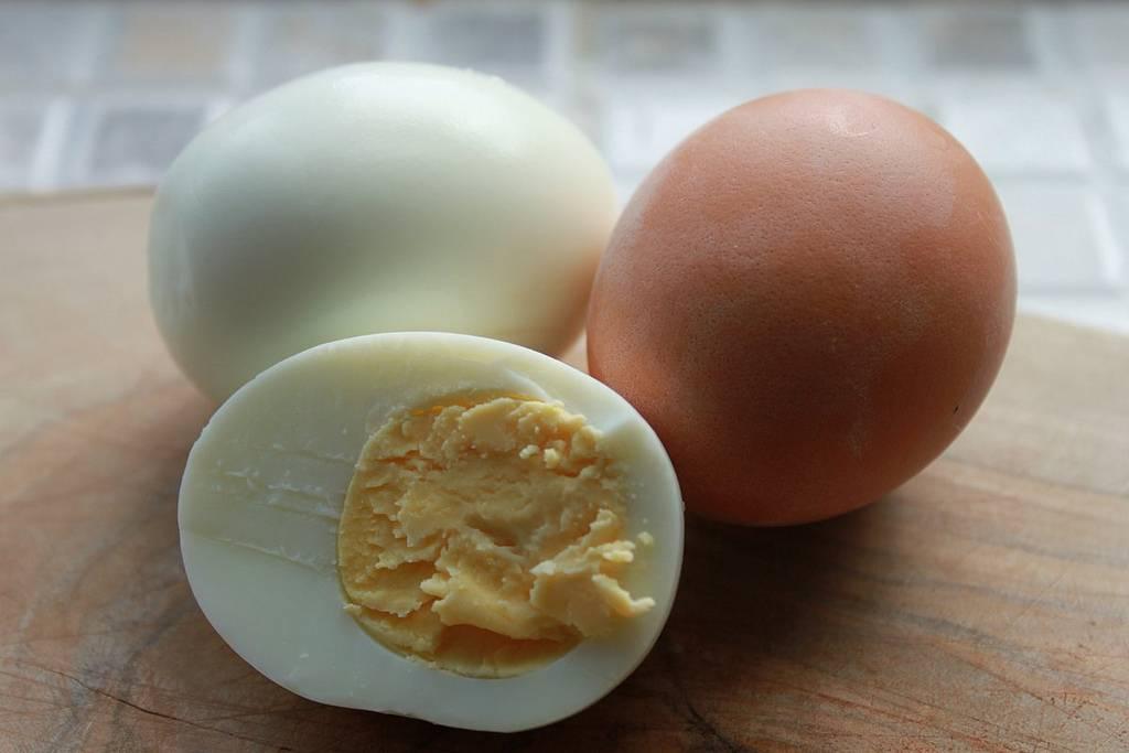 Можно ли давать яйца собакам
