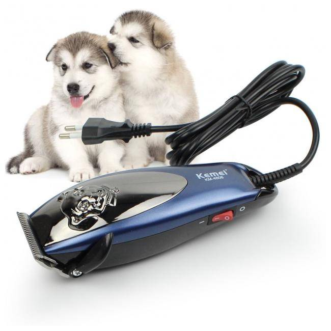 Машинка для стрижки собак: полезный инструмент для груминга на дому