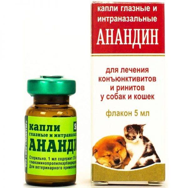 Инструкция по применению глазных капель и инъекций анандин для кошек