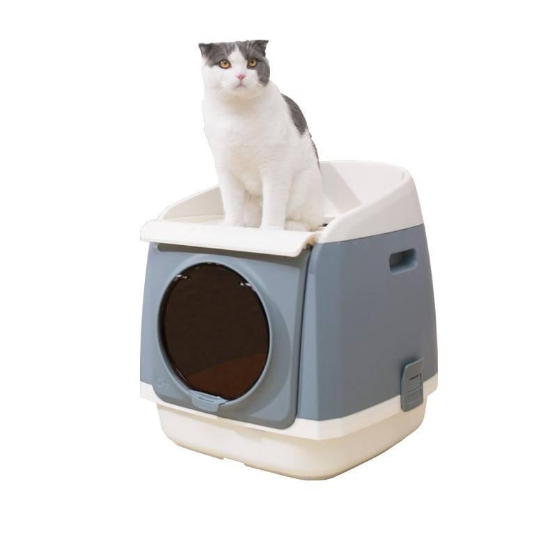 Как выбрать туалет для кошки - рейтинг 10 лучших лотков 2020 года