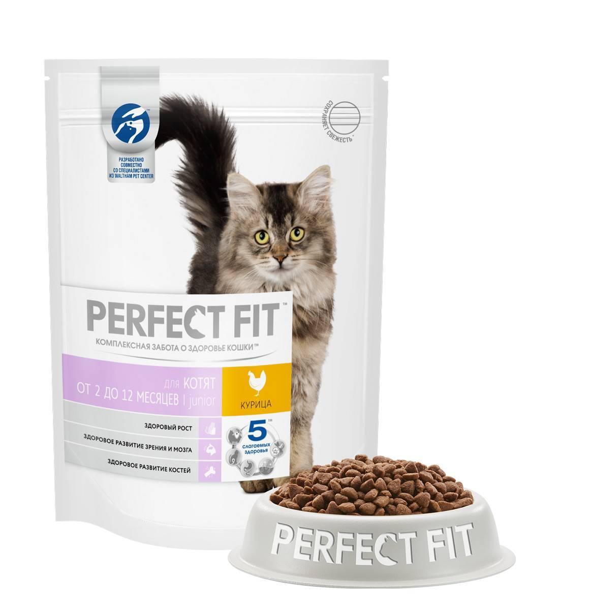 Корм для кошек perfect fit: отзывы и разбор состава - петобзор