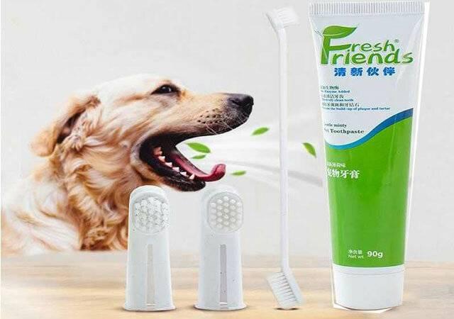 Лучшие зубные пасты, убирающие камень: рейтинг. что лучше убирает зубной камень, ирригатор, ультразвук или зубная паста?