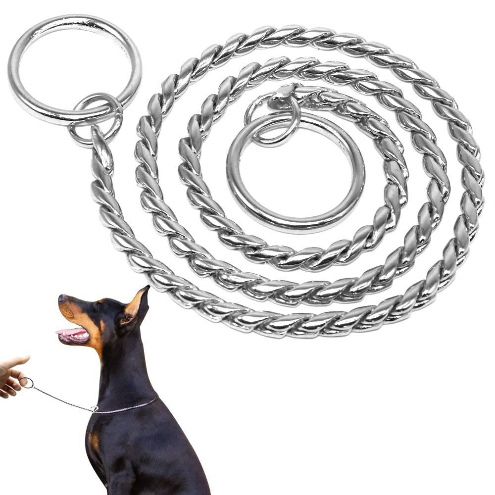 7 лучших электроошейников для собак