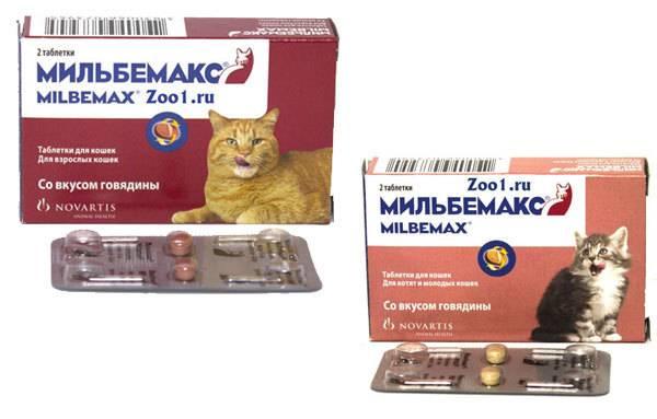 «мильбемакс»: инструкция по применению препарата для кошек