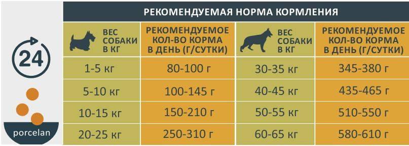 Рыбий жир для собак: дозировка, как и сколько давать щенку в день, норма в капсулах и инструкция по применению